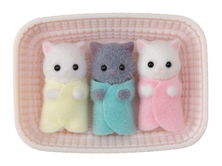 Persian Cat Triplets - 3